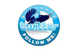 Follow me on Twitter logo