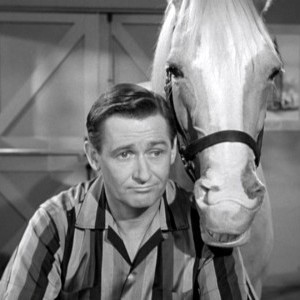 Alan Young die mister ed