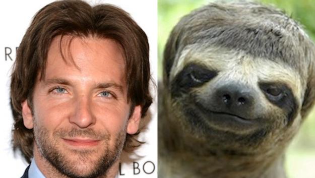 Bradley Cooper Sloth