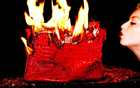 CLINT EASTWOOD'S DAUGHTER  BURNS $100k Handbag ... For the Hell of It! 4