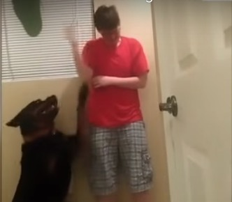 Danielle Jacobs Asperger's meltdown Trans In Viral Asperger Meltdown Dog Video Killed By Police