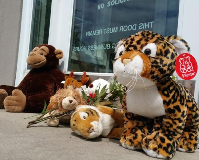 Dentist Office MEMORIAL FOR CECIL 51 400x322 WH MUST Respond As Dentist Lion Killer Petition Reaches 100K Signatures