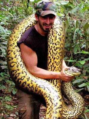 Discovery Channel controversial Eaten Alive 5