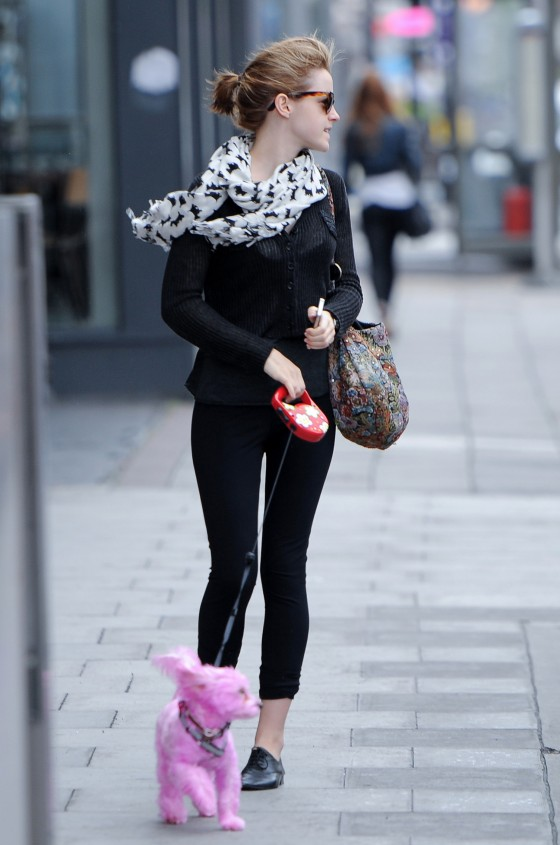 Emma Watson: Fame is a Pink Poodle | TheCount.com эмма уотсон