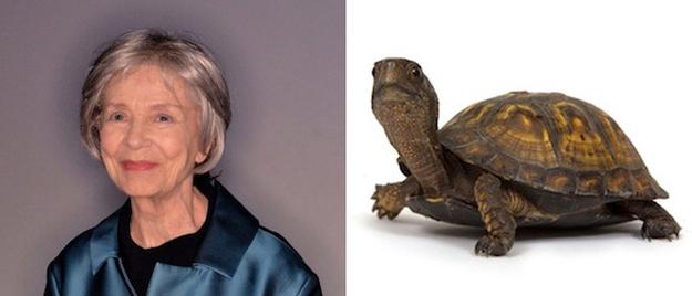 Emmanuelle Riva Turtle