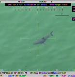Great White Shark Prompts Massachusetts Beach Closure 155x160 MONSTER Great White Shark Prompts Massachusetts Beach Closure