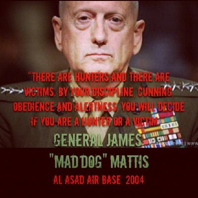 james-mad-dog-mattis-hunter-victim-meme