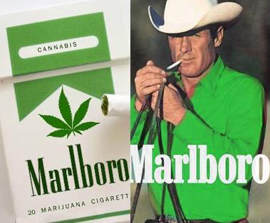Marlboro M Marijuana real cannabis