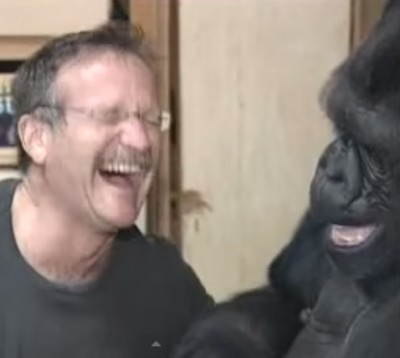 Robin Williams has a tickle fight with Gorilla 2