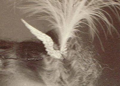 Saxton McKinley tiara