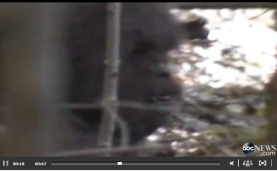 Screen-Shot-2013-10-02-at-1.32.58-PM