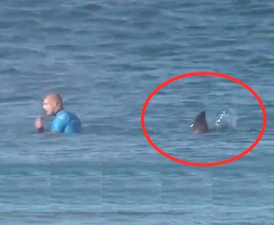 Shark Attacks Mick Fanning at J Bay Open 121 400x329 Mick Fanning 2, Great Whites 0! Surfer Runs Into Another SHARK