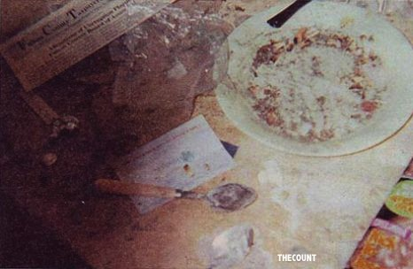 Tina Brown had reportedly revealed photographs of Whitney Houston's bathroom depicting drug paraphernalia including a crack pipe rolling papers and cocaine covered spoons Worlds Worst Mother Award Goes To... Brooke Mueller