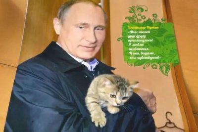 vladimir-putin-calendar-pussycat