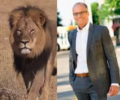 Walter James Palmer DDS cecil lion