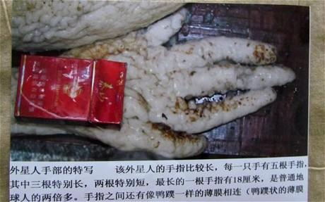 alien hand 2588258c Chinese Farmer CAPTURES ALIEN In Rabbit Trap! ((PHOTOS))