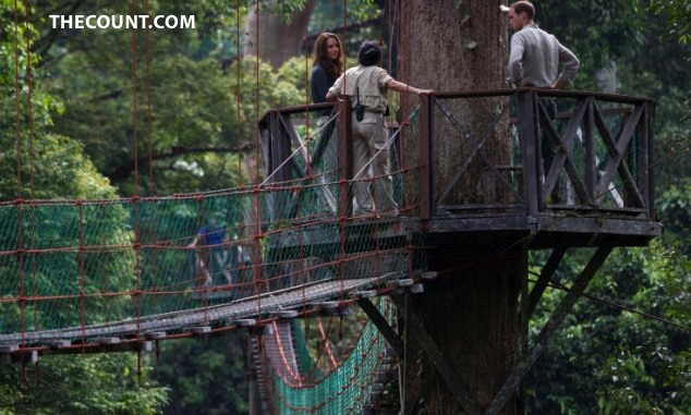 HIGH! Royal Couple SCALE 130 FOOT TREE!