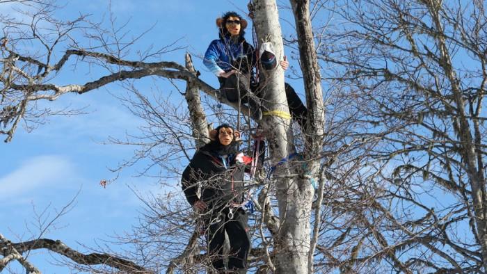 APTOPIX Sochi Olympics Alpine Skiing Men