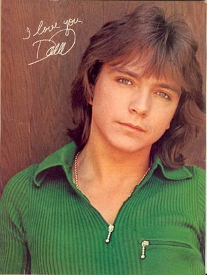 david cassidy David Cassidy ARRESTED AGAIN! 1.11.14