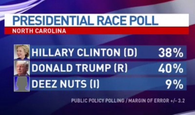 deez nuts polling numbers