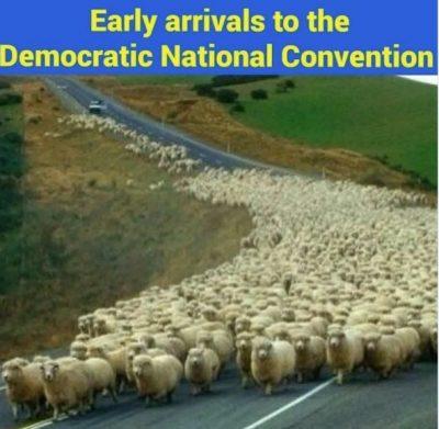 dnc meme sheep