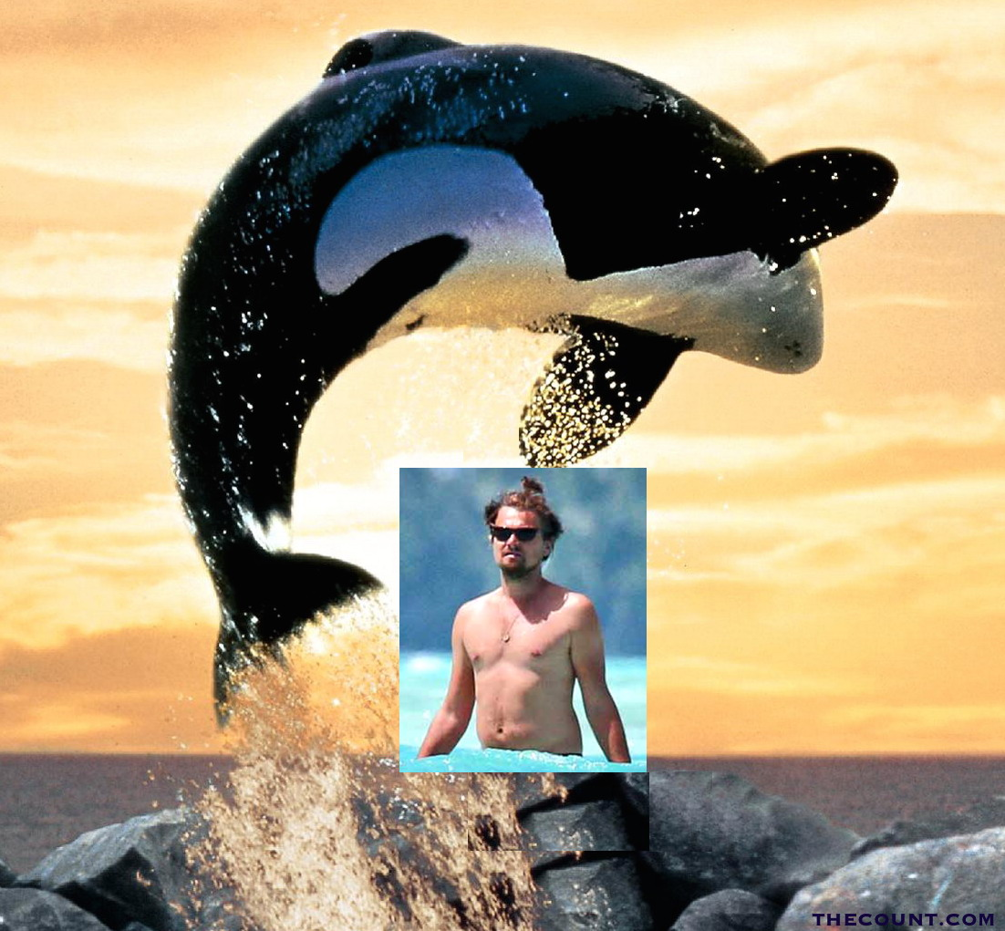 freewilly leo dicaprio .jpg