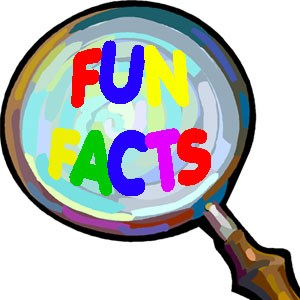 google fun facts Fun Facts Q & A! How Many Can You Get Right?
