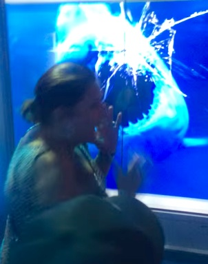 grandma shark tank prank