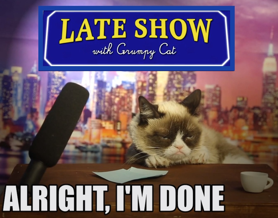 grumpy cat david letterman