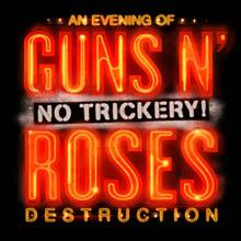 guns-n-roses-tickets_05-22-14_3_530280f3d2d8b