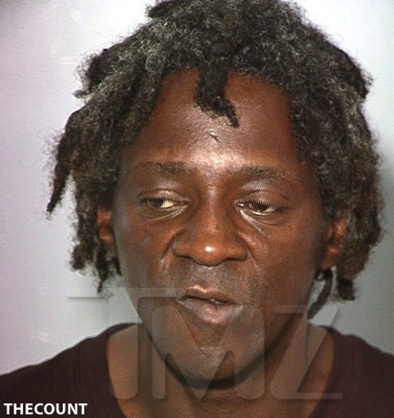 hhUn3 Flavor Flav: SHIFTY Mugshot   Assault Deadly Weapon