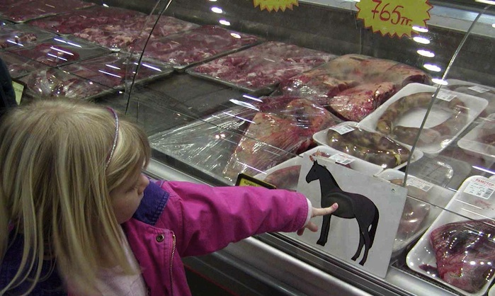 horse meat11 Nestle BEEF Products Contained HORSE