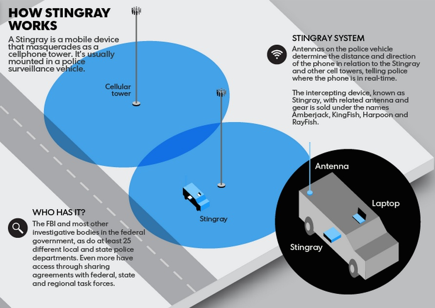 how stingray works