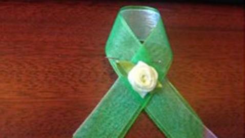 ht_green_ribbon_kb_130212_wblog