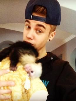 justin_bieber_monkey