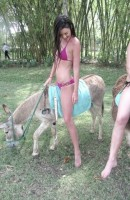 kendall jenner riding donkey