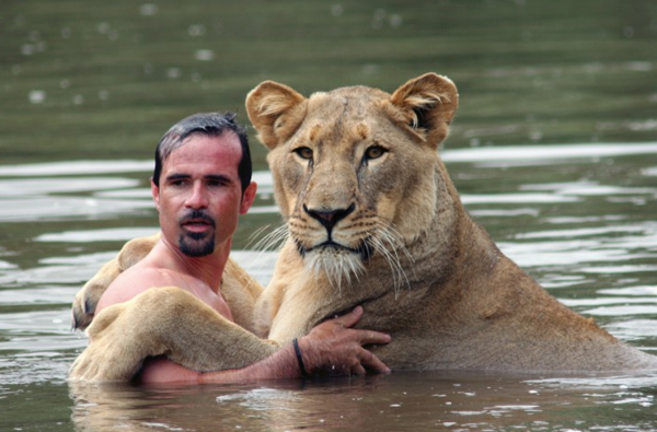 lion and man take a swim 1 Man Makes Love To Lioness