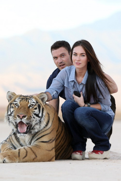 megan-fox-tiger-500x749