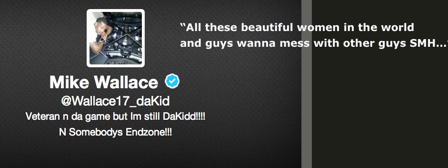 mike wallace tweet homo