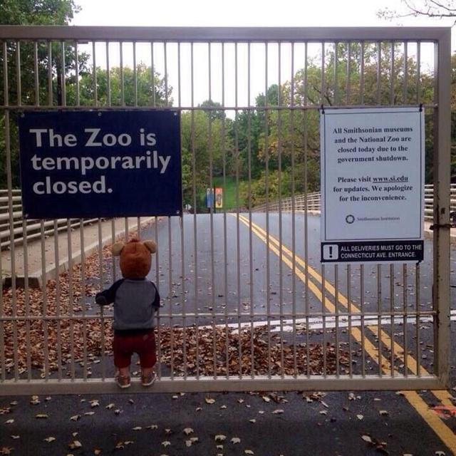 sad shutdown photo