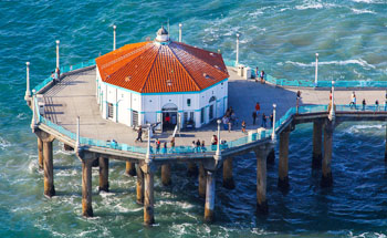 shark attacked a swimmer near the Manhattan Beach Pier 1