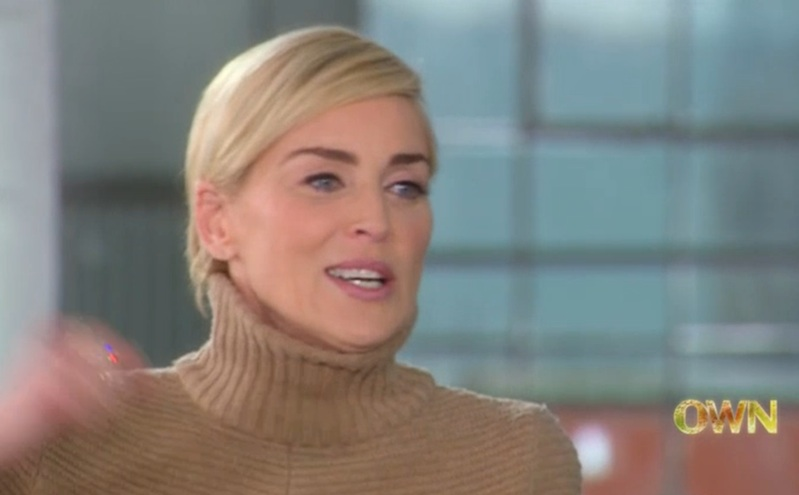 sharon stone plastic surgery 2