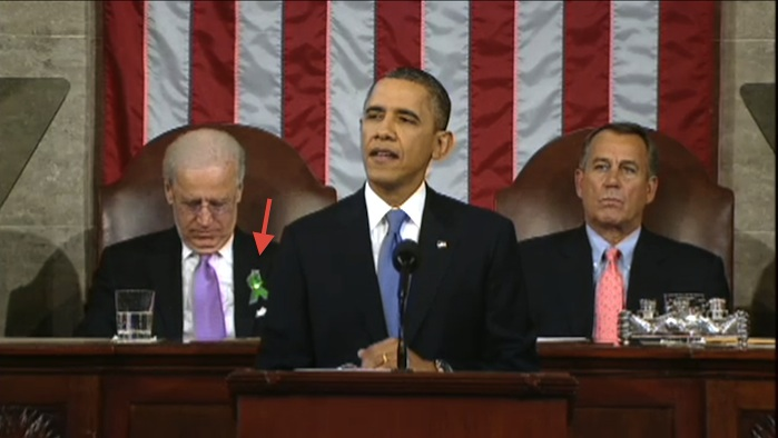 state of the union green ribbon