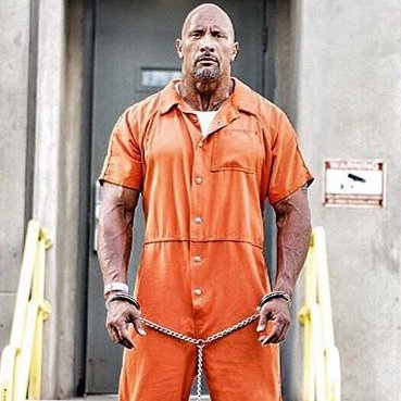 the rock wwe arrested