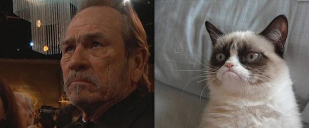 tommy lee jones grumpy cat
