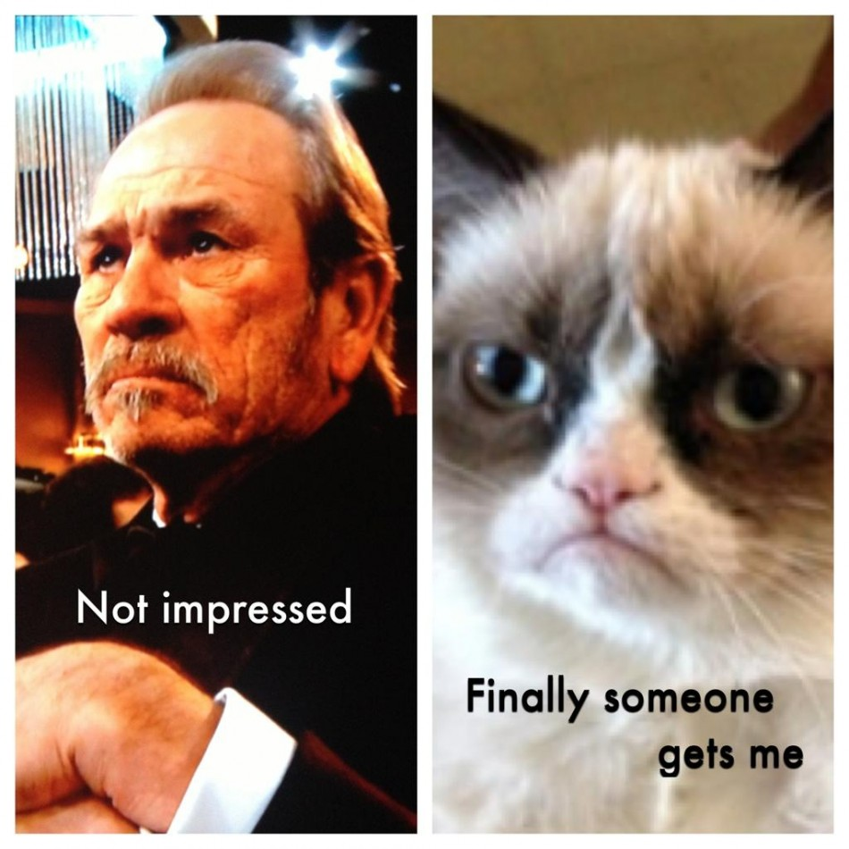 tommy lee jones grumpy meme Grumpy Cat Gets Own Agent Scores 5 Figure Contract With Friskies