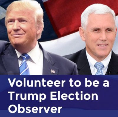 trump election observer form
