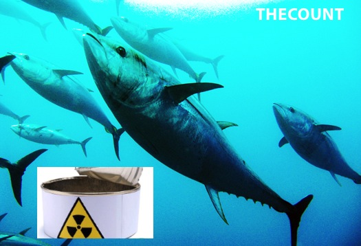 tuna radiation 1 WEST COAST BLUEFIN: Radioactive   Result Of Japan Nuke Failure