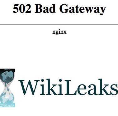 wikileaks-ddos-website